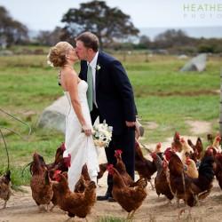 allen-farm-wedding-photographer
