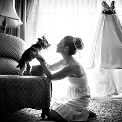 photo-of-bride-with-dog-at-wedding-by-susan-stripling
